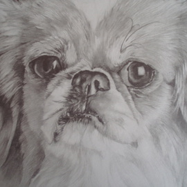 Alex Mcknight Artwork Gremlin dog, 2009 Pencil Drawing,