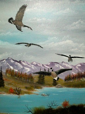 Al Johannessen: 'Canada Air Show', 2011 Oil Painting, Birds.    Canada geese landing to feed near Rock Creek in Montana      ...