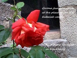 Alkistis Wechsler Artwork red rose in Gerona old Kabalah centre, 2011 Color Photograph, Travel