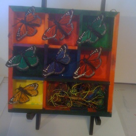 Butterflies In Motion, Allan Cohen