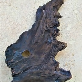 Natural walnut tree bark By Anastasia Pourliotou