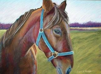 Andrea Mackey Artwork Friend, 2005 Pastel, Equine