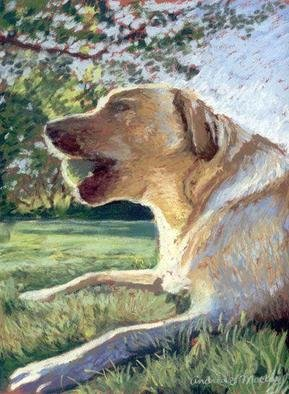 Andrea Mackey: 'Lets Play', 2005 Pastel, Dogs. A tennis ball; a big yard; this young yellow lab is ready to have fun. Painted with soft pastels in a style thats a cross between impressionism and realism. This painting is unframed. ...