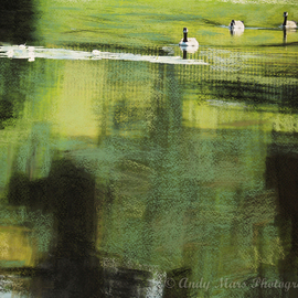 Andy Mars Artwork Geese On Pond, 2007 Mixed Media, Nature