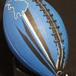 Lions Football Purse By Anna Peterson