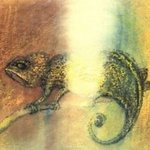 Chameleon And Light, Agnieszka Robbins