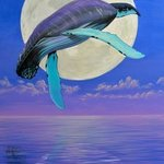 And The Whale Jumped Over The Moon, Environmental Artist Apollo