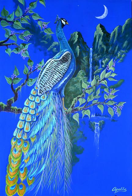 environmental artist apollo artwork peacock moon