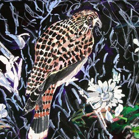 Mary Hatch: 'Night Hawk', 2012 Acrylic Painting, Birds. Artist Description:  Part of the Bird, Flora and Fauna Series. Night Hawk with black background and white flowers....