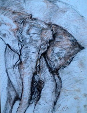 Arlene Rabinowitz Artwork Charging elephant, 2004 Pastel, Wildlife