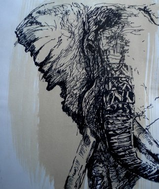Arlene Rabinowitz Artwork Elephant Head, 2001 Ink Drawing, Wildlife