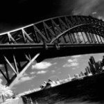Sidney palms and bridge By Arsen Revazov