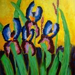 Irises  By Bud Cassiday