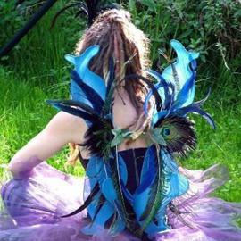 Blue Peacock Faery Wings
