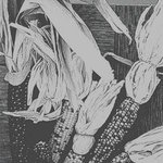 Indian Corn, Carol Tufford