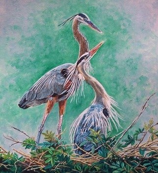 Judith Smith Wilson: 'Blue Herons Nesting', 2010 Watercolor, Wildlife.   Mating Blue Heron's   ...