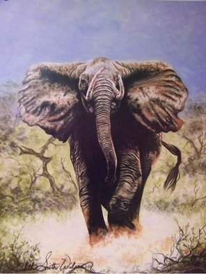 Judith Smith Wilson: 'Charging Elephant', 1991 Pastel, Wildlife.  Limited Edition Print Only  S/ N 500 Original Sold  ...