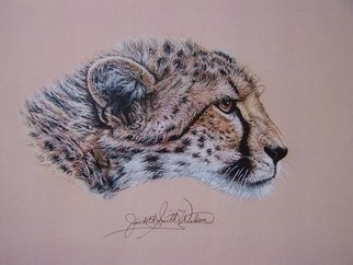 Artist: Judith Smith Wilson - Title: Duma the Cheetah - Medium: Watercolor - Year: 2002
