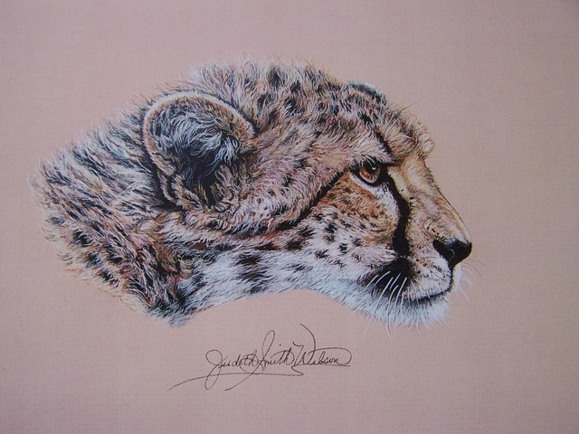 Judith Smith Wilson Artwork Duma The Cheetah Original