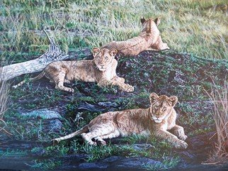 Judith Smith Wilson: 'Just Lion Around', 2010 Watercolor, Wildlife.  Painting done from original photograph taken by the artist on trip to Kenya, East Africa.  Three young lions laying on a mound. ...