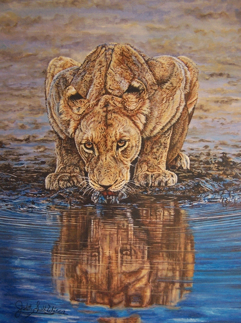 Turkey For Sale >> Judith Smith Wilson Artwork: Lioness At Waterhole | Original Watercolor | Wildlife Art