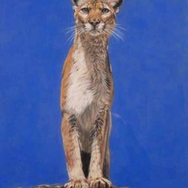 Magnificent Cougar By Judith Smith Wilson