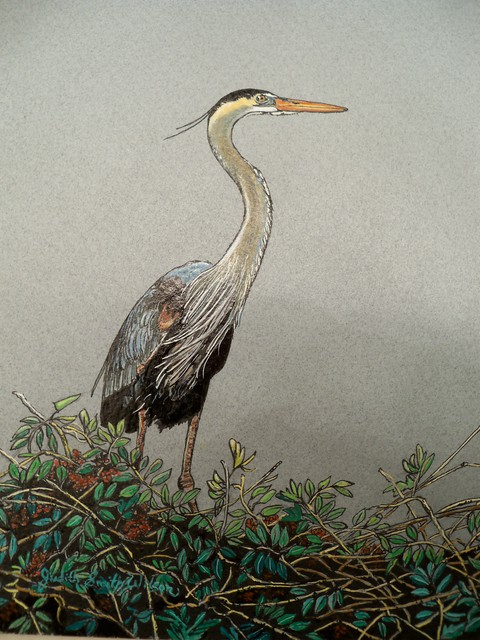Judith Smith Wilson  'Magnificient Blue Heron', created in 2010, Original Pastel.