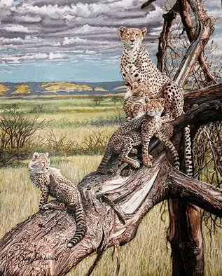 Judith Smith Wilson: 'Once, Twice, Three Times A Cheetah', 2015 Watercolor, Wildlife.