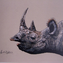 The black Rhino  By Judith Smith Wilson