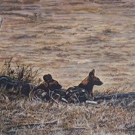 Wild Dogs of Africa By Judith Smith Wilson