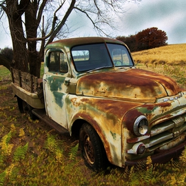 Tammy Gatten: 'Left Out', 2008 Other Photography, Automotive. Artist Description:  A vintage pickup left out in a field in the midwestern state of Oklahoma. The rust and the field complimented each other both having done their share of work in days past. ...