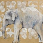 Elephant  , Ashley Jacobsen