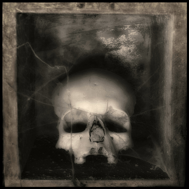 Augusto De Luca  'Skull 7 - By Augusto De Luca', created in 2017, Original Photography Black and White.