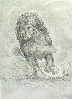 Animals Pencil Drawing by Austen Pinkerton titled: Charging Lion, created in 2005