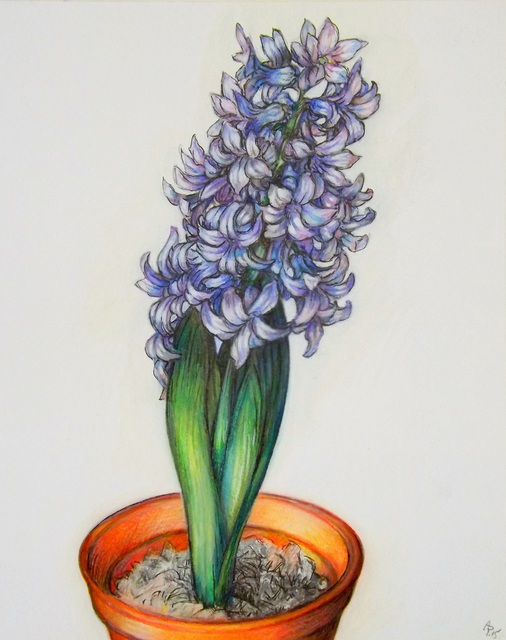 Austen Pinkerton  'Hyacinth', created in 2015, Original Painting Ink.
