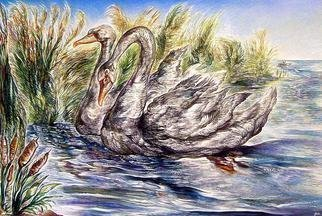 Austen Pinkerton Artwork 'Swans', 2008. Giclee. Animals. Artist Description: A pair of swans swimming amongst a mass of reeds by the side of a river, a warm breeze is blowing, it is ......