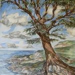 Tree On Clifftop, Austen Pinkerton