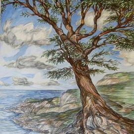 Tree On Clifftop
