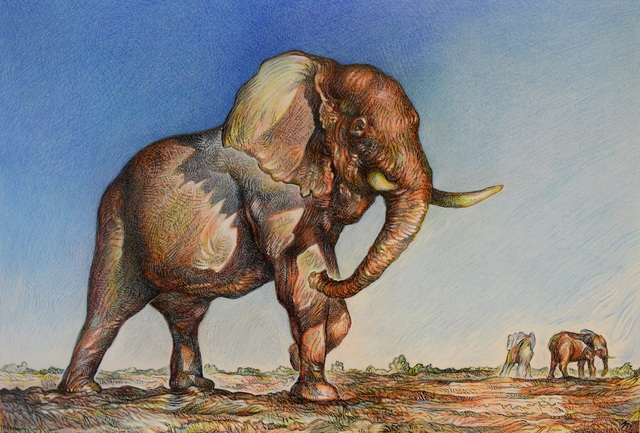 Austen Pinkerton  'Bull Elephant', created in 2017, Original Painting Ink.