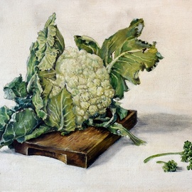 Austen Pinkerton: 'cauliflower painted age 15', 1966 Oil Painting, Still Life.