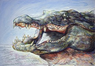 Austen Pinkerton: 'crocodile', 2018 Pastel Drawing, Animals.