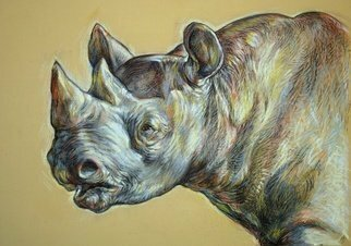 Austen Pinkerton: 'rhino head', 2018 Pastel Drawing, Animals.