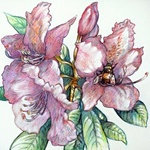 Rhododendron And Bumble Bee, Austen Pinkerton
