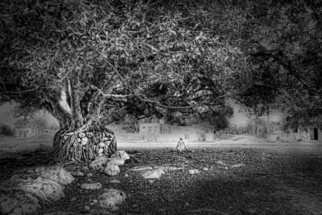 Andrew Xenios: 'The Maya', 2012 Black and White Photograph, Representational. Artist Description: A Mayan man enjoys the coolness of this magnificent tree....