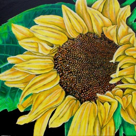 Aaron Lawrence Artwork The Sunflower, 2011 Oil Painting, Floral