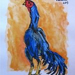 Rooster, Claudio Barake