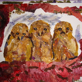 Owlets Thinking Not Yet Spotted, Basant Soni