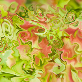 abstraction of leaves