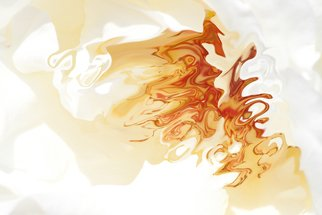 Bruno Paolo Benedetti: 'dancing orange shapes', 2013 Digital Photograph, Abstract. Artist Description: Fluid orange shapes seem dancing on gleaming white background. Dark and light orange colors change into aquarelle texture. Single copy printed on Kodak Endura metallic paper, signed and numbered on the back.Buy RM License on