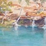 Fern Pool Karijini By Bernice Wright
